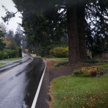 Horn Lane