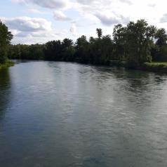 Willamette River, Mid-July, 2016