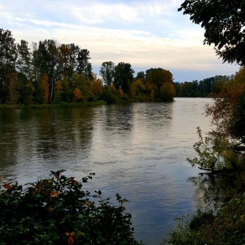 Willamette River, 2016